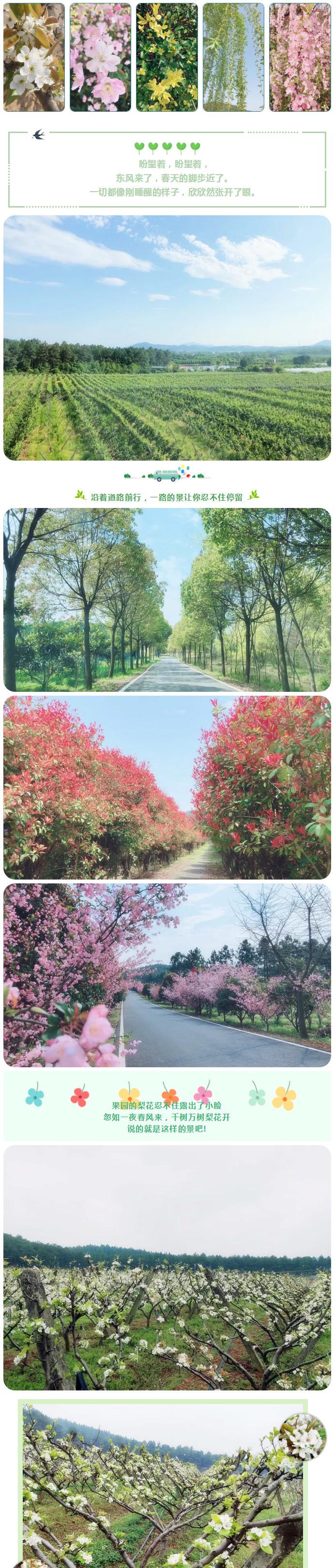 春归山谷,  贴近自然,  体验最美亲子时光